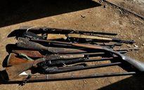 Đắk Nông: 3 nhân viên bảo vệ rừng bị bắn chết