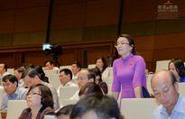 Dự thảo Luật đấu giá tài sản: Đột phá trong việc ngăn tình trạng 'quân xanh, quân đỏ'