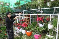 Tự tạo cơ hội: Bán hoa, cây cảnh qua mạng