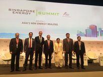 Thứ trưởng Hoàng Quốc Vượng tham dự Tuần lễ Năng lượng quốc tế Singapore 2016