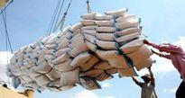 Thu 1,9 tỷ USD từ xuất khẩu gạo