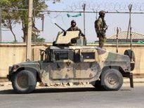 Afghanistan xác nhận hai thủ lĩnh Al Qaeda bị tiêu diệt