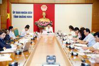 Phản biện về dự án phục hồi môi trường nước Vịnh Hạ Long