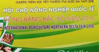 Khai mạc Hội chợ Nông nghiệp Quốc tế Đồng bằng Bắc bộ 2016 ngày 1/11