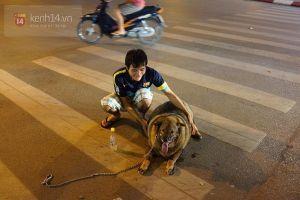 Cư dân mạng tiếp tục thi nhau khoe ảnh múp míp của thú nuôi