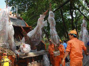 Sài Gòn cuối năm, dòng nước mắt khi chợ hoa tàn cuộc