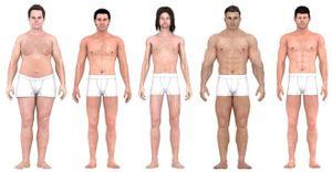 Chuẩn mực cơ thể đàn ông thay đổi thế nào 150 năm qua?