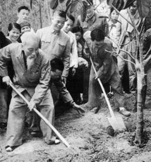 Bác Hồ răn dạy cán bộ từ việc trồng cây