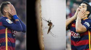 Barcelona sợ virus Zika tấn công Suarez và Neymar