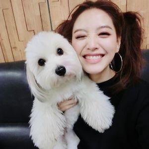 Sao Hàn 12/2: Tiffany khoe xì tai đi chơi, Amber đầu mào gà hầm hố