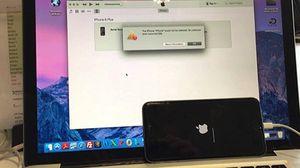 Apple bị khởi kiện vì gây ra mã lỗi Error 53