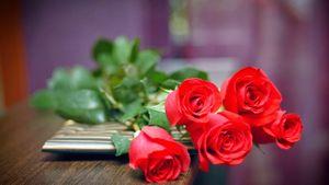 Valentine 14/2 mua tặng quà gì cho bạn gái?