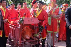 """Không chém lợn ở sân đình, hai """"ông Ỉn"""" được đưa đi """"trảm"""" kín"""