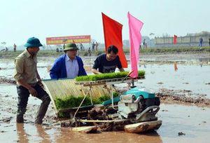 Bí thư, Chủ tịch TP.Hà Nội lội bùn cấy ruộng cùng dân