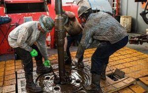 Venezuela tuyệt vọng trong giá dầu giảm sâu