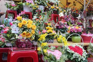 Giá hoa Hồng tăng sốc vào ngày Lễ Tình nhân
