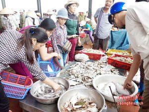 Hải sản Diễn Châu hấp dẫn du khách