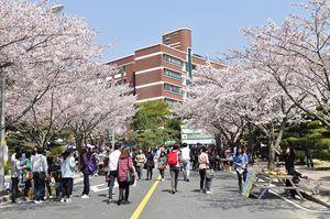 Hàn Quốc: Công bố mức học phí của 180 trường ĐH