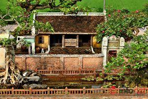 Ngỡ ngàng trước vẻ đẹp ngôi nhà cổ trong chậu bonsai