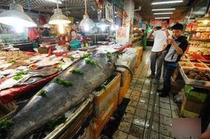 Cá khổng lồ gây náo loạn ở chợ