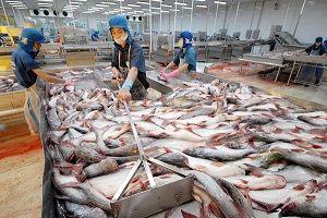 Bộ Công Thương hoan nghênh Thượng viện Hoa Kỳ hủy chương trình giám sát cá da trơn