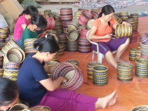Ninh Bình: Độc đáo làng nghề chiếu cói Kim Sơn hơn 100 năm tuổi
