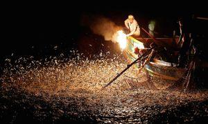 Màn đánh cá bằng lửa đẹp mê hoặc ở Đài Loan