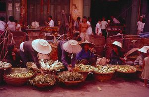 Góc ảnh màu sống động Bangkok những năm 1950