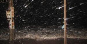 Cảnh tượng bão số 1 đổ bộ khủng khiếp vào Thái Bình - Nam Định