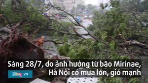 Bão Mirinae hoành hành ở Hà Nội