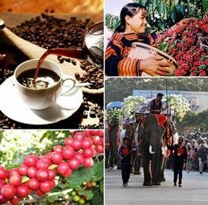 Tổ chức Ngày cà phê Việt Nam