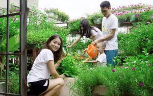 Nuôi gà, thả cá, trồng rau siêu sạch trên sân thượng 80m2
