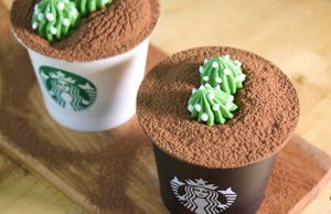 Cốc Starbucks ngon lành này thực ra lại là pudding tiramisu cơ