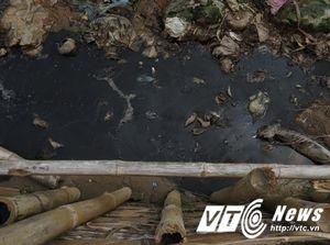Bãi rác khổng lồ bốc mùi hôi thối nồng nặc ở Hải Phòng: Xử lý thế nào?