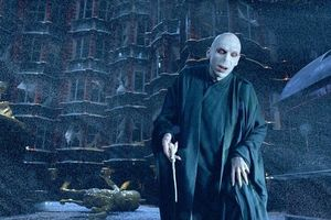 Khỉ sơ sinh có gương mặt giống Voldemort