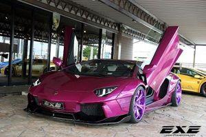 """Siêu xe Lamborghini Aventador tím hồng """"hàng khủng"""""""