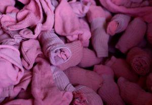 Cuộc sống nóng nực ở nhà tù bắt phạm nhân mặc quần đùi hồng