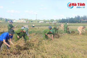 Ảnh đẹp các chiến sỹ công an gặt lúa giúp dân