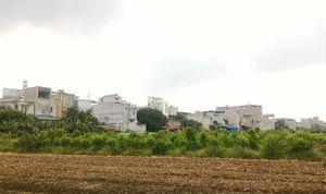 Ai bảo kê cho hàng trăm ngôi nhà 'mọc' trên đất nông nghiệp?
