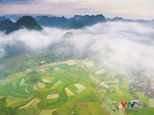 Đẹp mê mẩn 'Nụ cười Việt Nam'