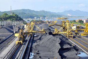 Tọa đàm: 'Nhập khẩu than và bảo đảm an ninh năng lượng quốc gia'