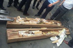 Lại phát hiện một tấn ngà voi trong hai container