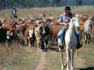 Mua trang trại ở Úc, Mỹ: Chưa hẳn hốt bạc