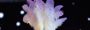 Hà Hồ khoe vũ đạo bốc lửa bên dàn người đẹp Hoa hậu Hoàn vũ