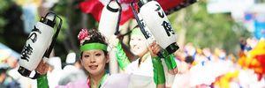 5 lý do khiến lễ hội hoa anh đào Hanami trở thành tâm điểm trong dịp Tết Nguyên đán 2016