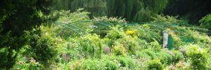 Thăm biệt thự trong bức tranh của danh họa nổi tiếng Monet
