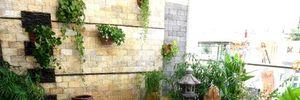 Thiết kế sân vườn đẹp cho nhà phố, biệt thự