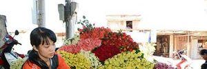 """Xứ sở hoa Đà Lạt """"khát"""" hoa trước Ngày lễ Tình nhân"""