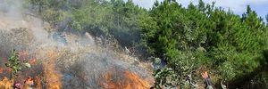 Hơn 200 người khống chế đám cháy ở vườn Quốc gia Hoàng Liên Sơn