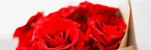 Bí mật bên trong bó hồng đắt nhất Valentine 2016